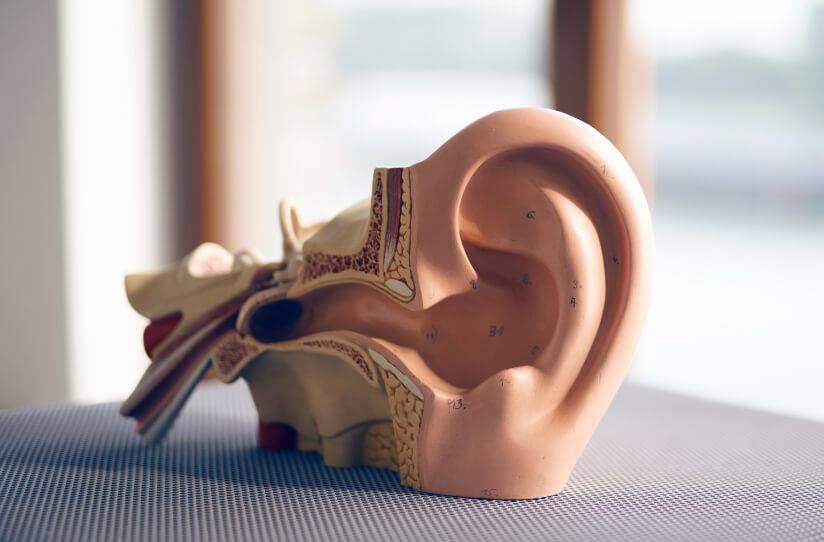 Hörgeräte Hörsturz